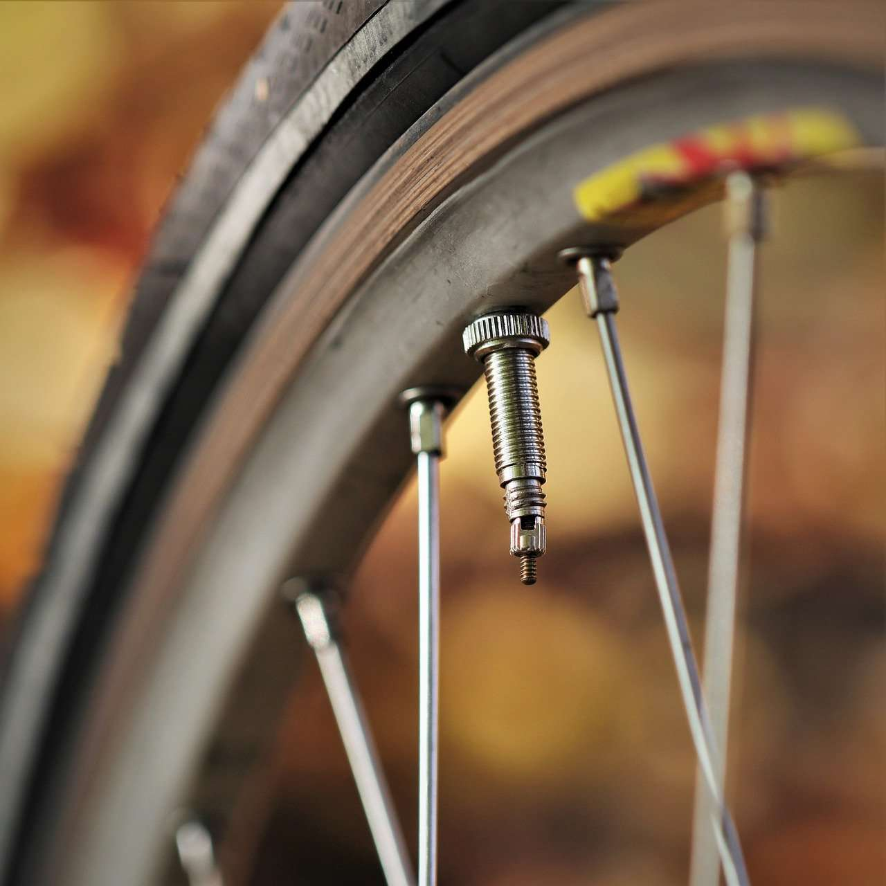 wheel, bike, rim